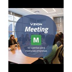 Meeting M